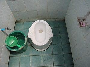 300px-Thai-style_toilets 15 WEEKS - THAILAND DIARIES - EPISODE 28
