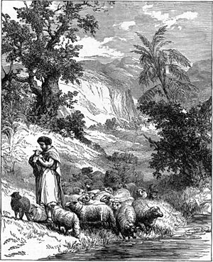 "English: A Shepherd. Caption: ""This is a ..."