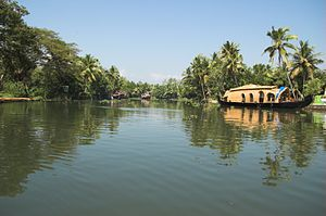 English: This is a picture of the Backwaters o...
