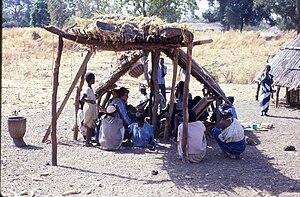 Medical research at Ndebu, southeast Senegal (...