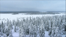 Finnish winter scene