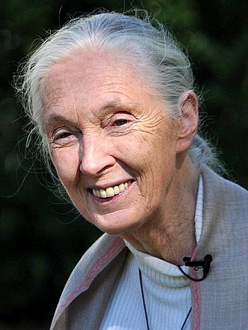 English: Jane Goodall attending the 18th Annua...