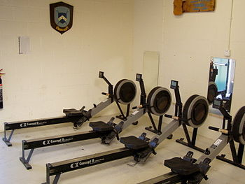 English: A row of Concept2 Indoor rowers. Photo taken by Johnteslade and released into public domain.