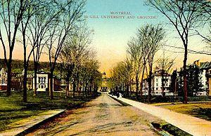 Postcard of McGill University, Toronto, Ontari...