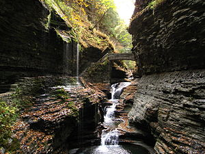 English: The gorge at Watkins Glen State Park,...