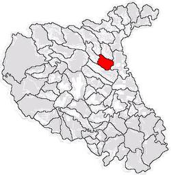 Poziţia localităţii Panciu