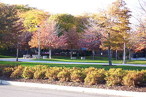 University of Illinois at Chicago East Campus ...