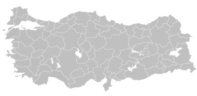 Турция днес. Това е единствената държава, в която се говори изцяло турски.