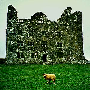 Ireland, green building