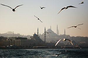 Istanbul'da çevre kirliliği