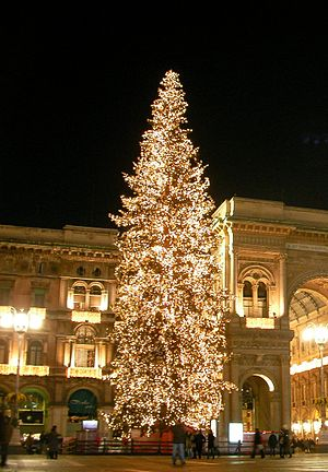 English: The Christmas tree of Piazza Duomo in...