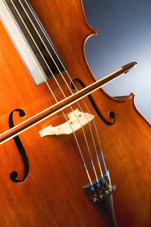 bridge (instrument) - wikipedia