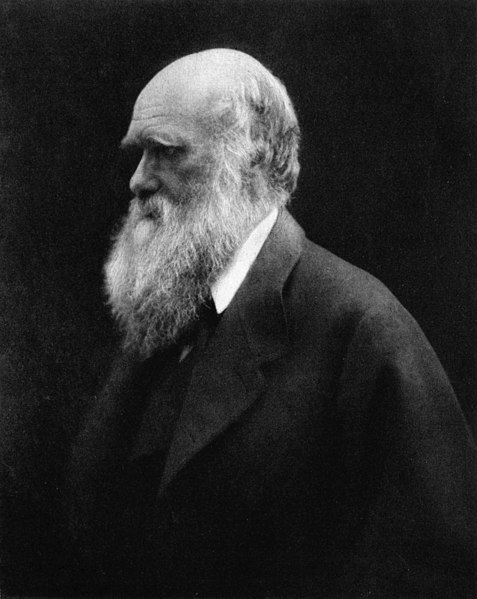 Ficheiro:Charles Darwin by Julia Margaret Cameron 2.jpg