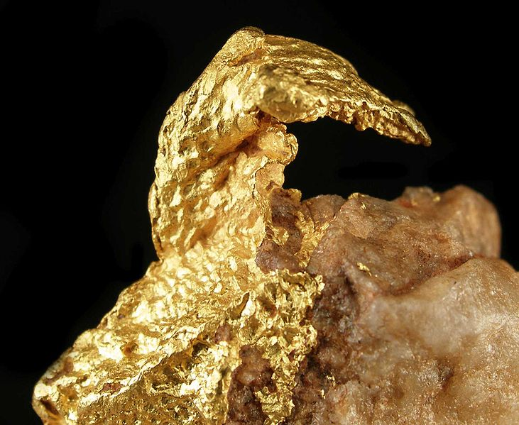 Rich specimen of gold in quartz