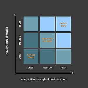 English: McKinsey matrix as described in McKin...