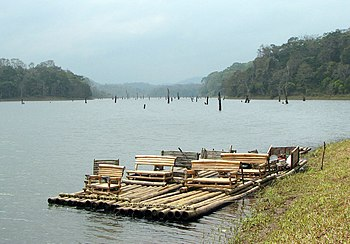 Bamboo raft on Periyar lake, Periyar National ...