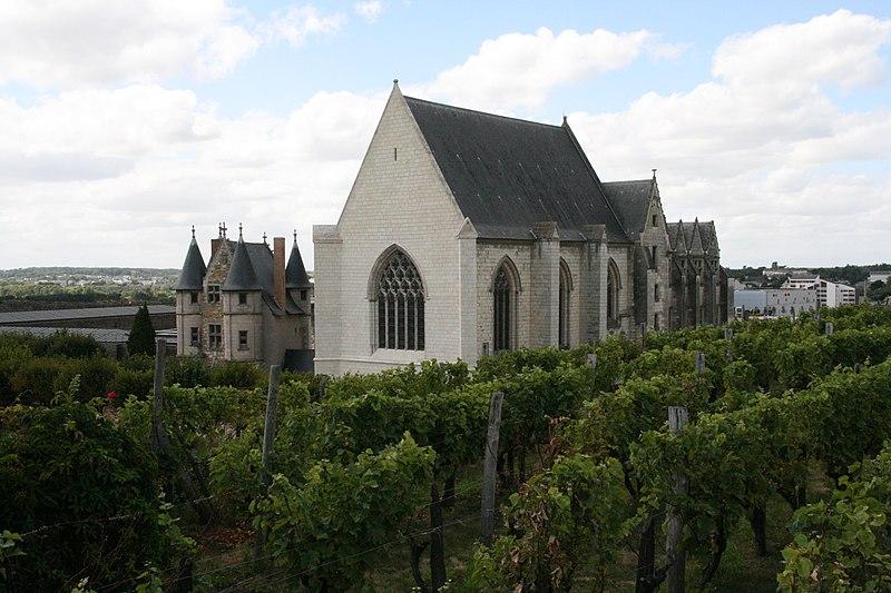 Angers - Chateau - La chapelle, le chatelet et les vignes - 20080921