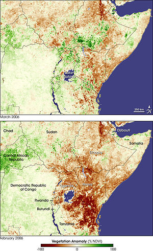 vegetation anomalies in East Africa in Februar...