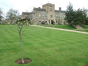 Canons Ashby.