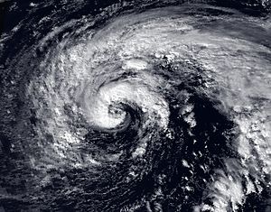 Image of Hurricane Grace of the 1991 Atlantic ...