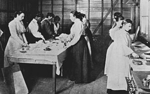 English: Ironing class at the Brisbane Technic...