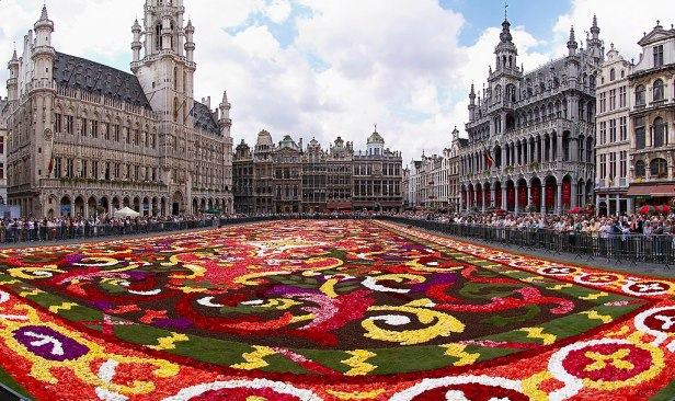Brussels floral carpet B