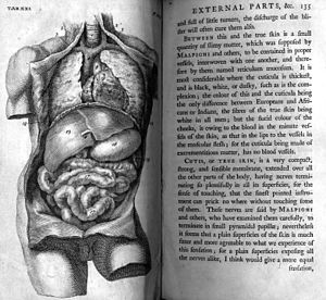 William Cheselden (1688-1752): The Anatomy of ...