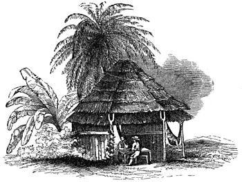 Indian hut in the Tiera Caliente