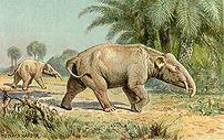 Palaeomastodon