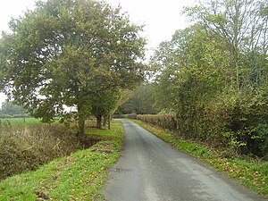 English: Autumn Colours on the small road Arou...