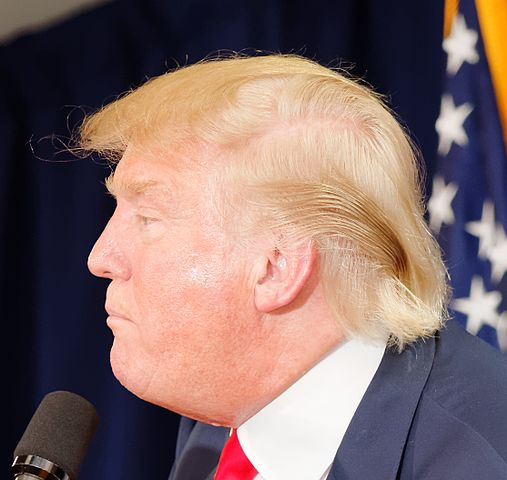 File Donald Trump Haircut Laconia By Michael Vadon July