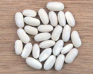 Phaseolus vulgaris, white beans