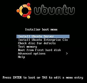Screen Shot of Installing Ubuntu Server