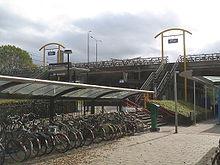 Überdachter Fahrradparkplatz an einem niederländischen Bahnhof. Ein gutes Schloss zahlt sich aus!