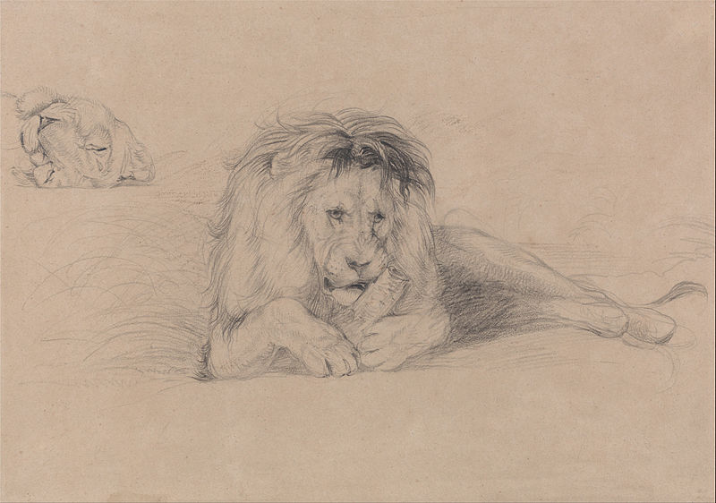 File:John Frederick Lewis - Study of a Lion and Study of a Lioness' Head - Google Art Project.jpg