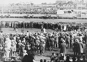 Phar Lap winning the Melbourne Cup Race from S...