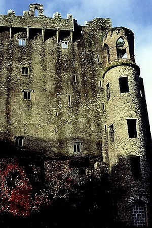 English: Blarney Castle - East Wall The arch a...