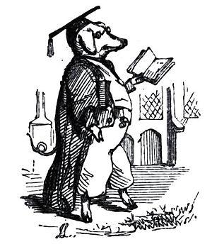 English: illustration from Leech's comic latin...