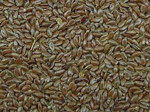 can flaxseed meal help you lose weight