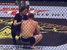 Mixed Martial Arts Wikipedia