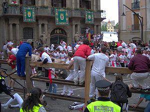 Bulls running on 7th July 2005, Consistorial S...