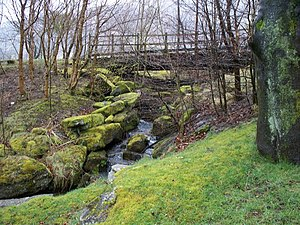 English: Rushing water, Ebbw Vale Mountain str...