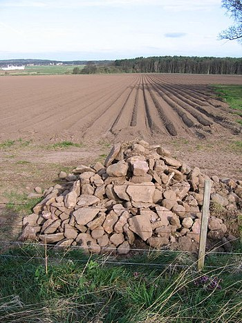 English: A Pile Of Stones These stones were re...
