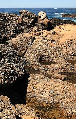 English: Carmelo Formation at Point Lobos