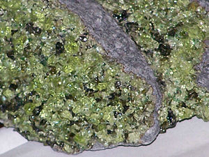 Peridotite xenoliths in basalt—olivines are li...
