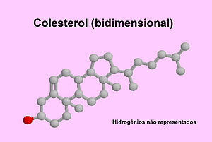 Cholesterol-bidimensional