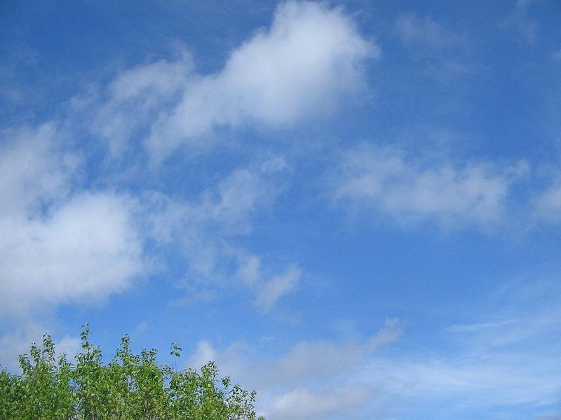Archivo:Cumulus fractus.JPG