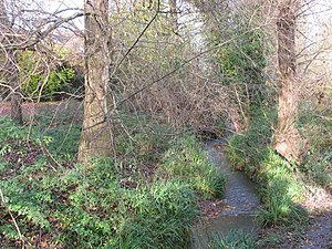 English: Lilley Brook near Cox's Meadow The Li...