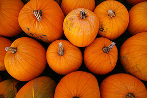 English: Pumpkins