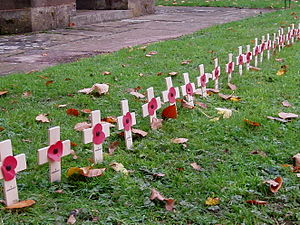Remembrance Sunday - crosses in church yard